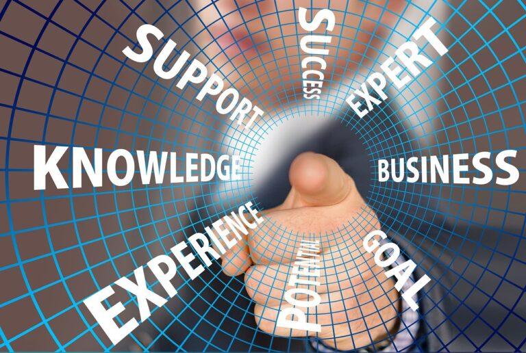 Σύμβουλος επιχειρήσεων